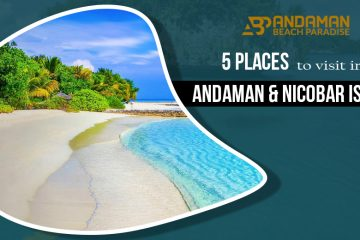 5 Places to visit in Andaman & Nicobar Island