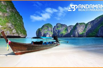 A Complete Travel Guide for Andaman Tour