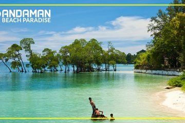The Professional Experts for the Amazing time in Andaman